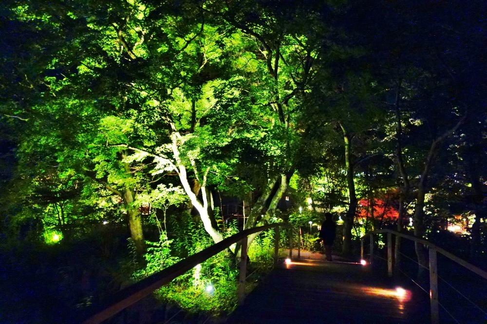 星のや軽井沢 夜 写真