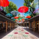 【NEWS】ハルニレテラスの雨イベントが超楽しい!「アンブレラスカイ」