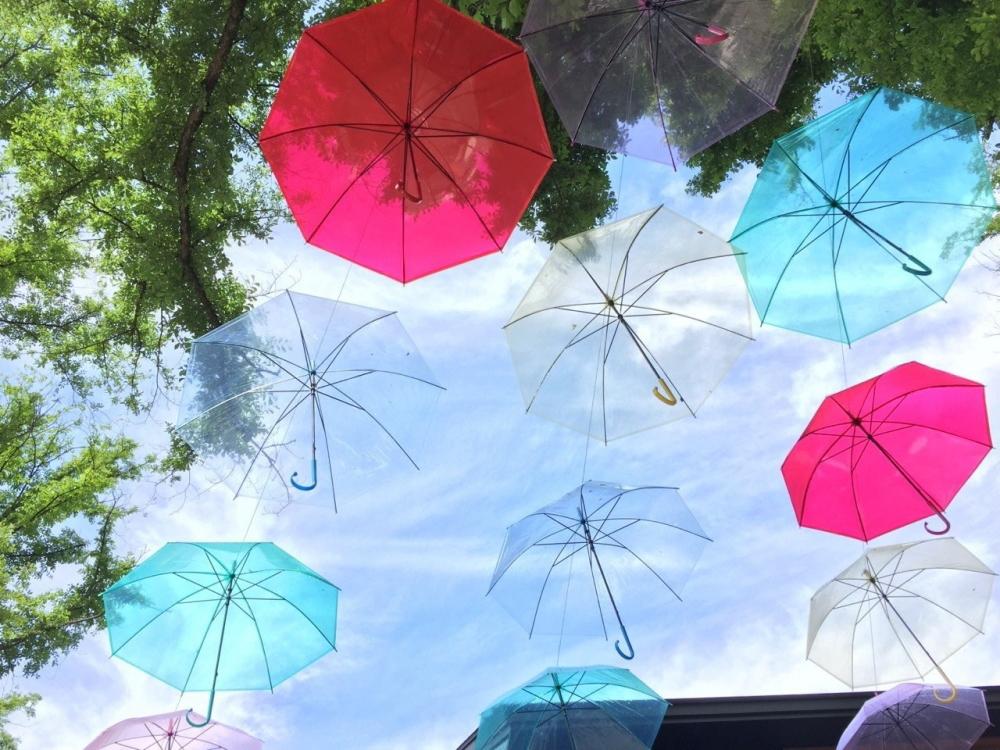 傘のあずまや