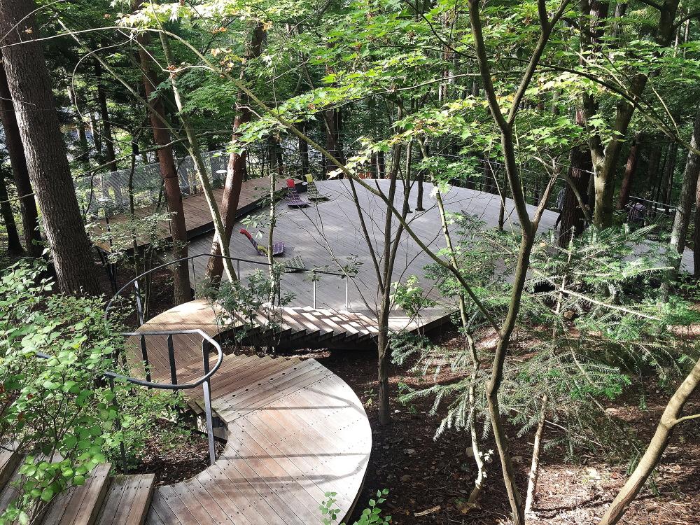 木漏れ日テラス