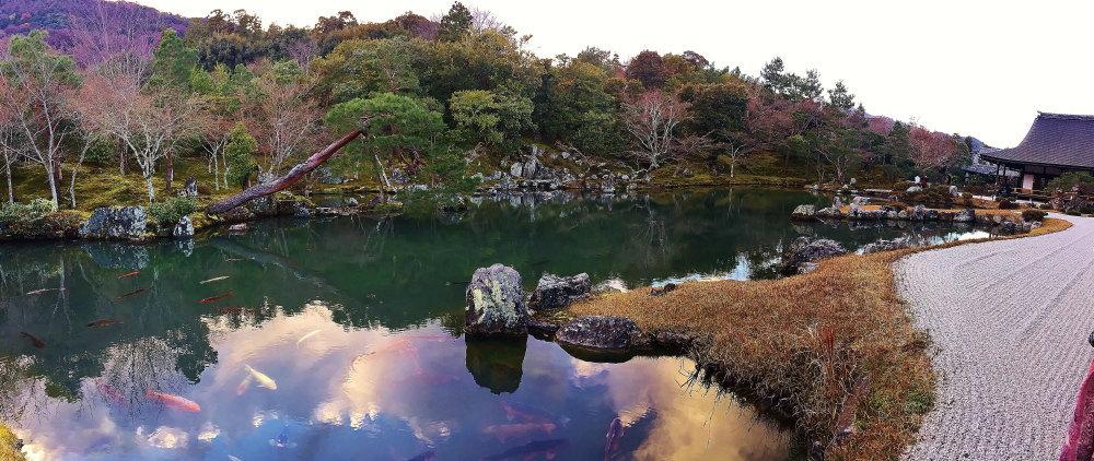 天龍寺 池