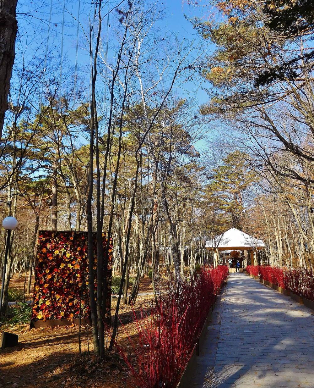 ブレストンコート 庭