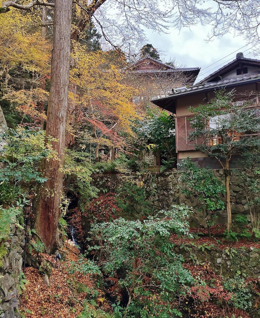 星のや京都 建物