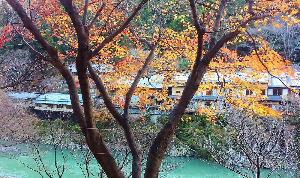 嵯峨野トロッコから星のやを見る
