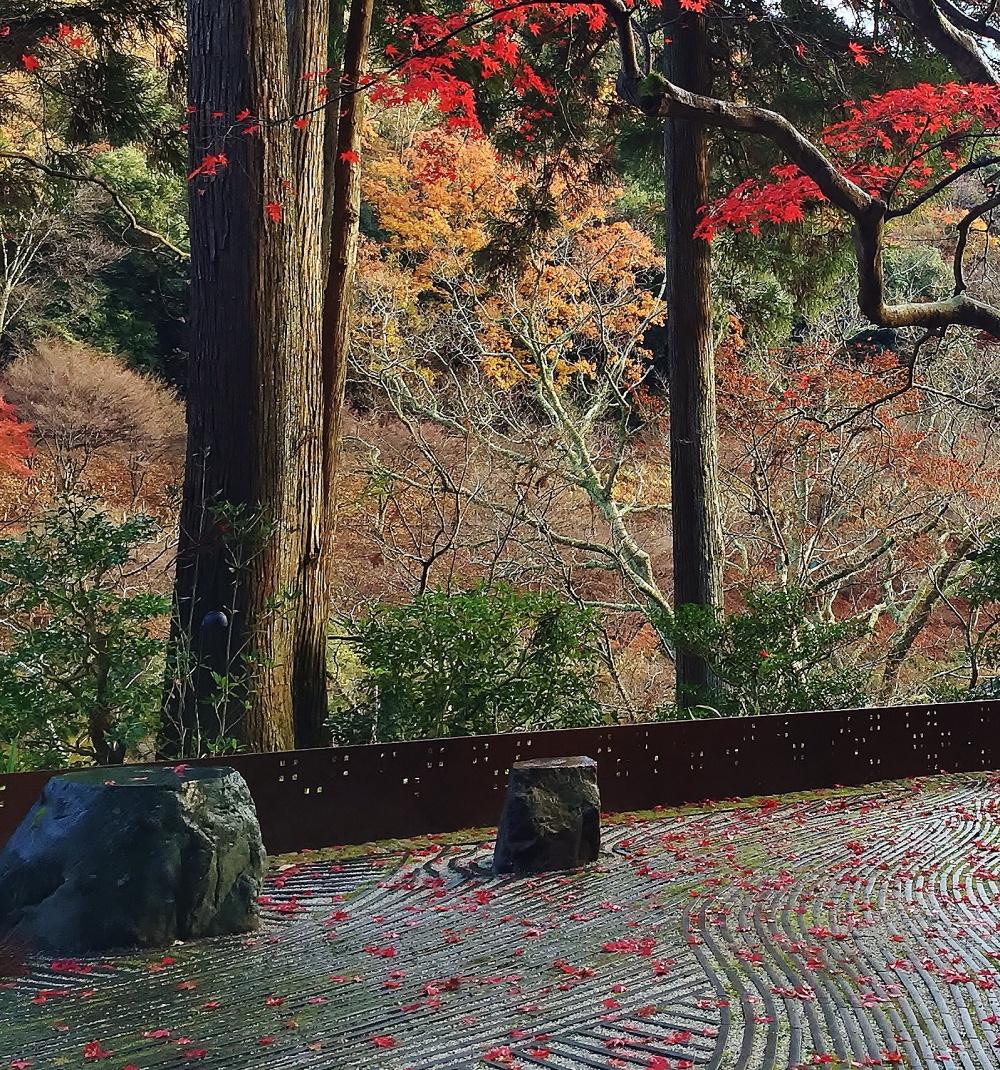 2014年度 一造会大賞 優秀賞 星のや京都「奥の庭」