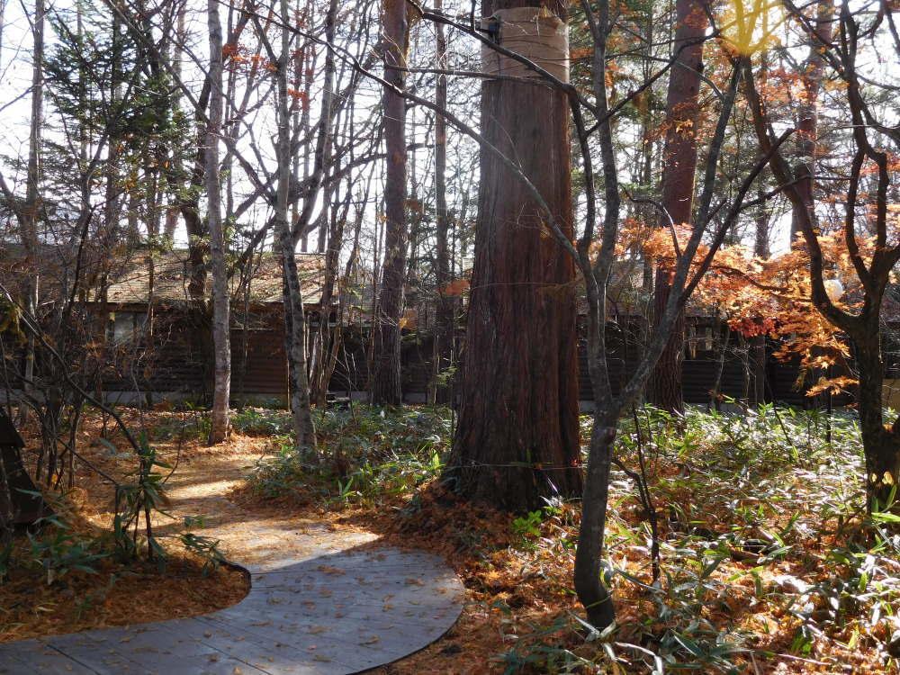 ブレストンコート お庭の写真