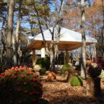 【ブレストンコート】広いお庭を散策してみた「ニコライバーグマン」の世界