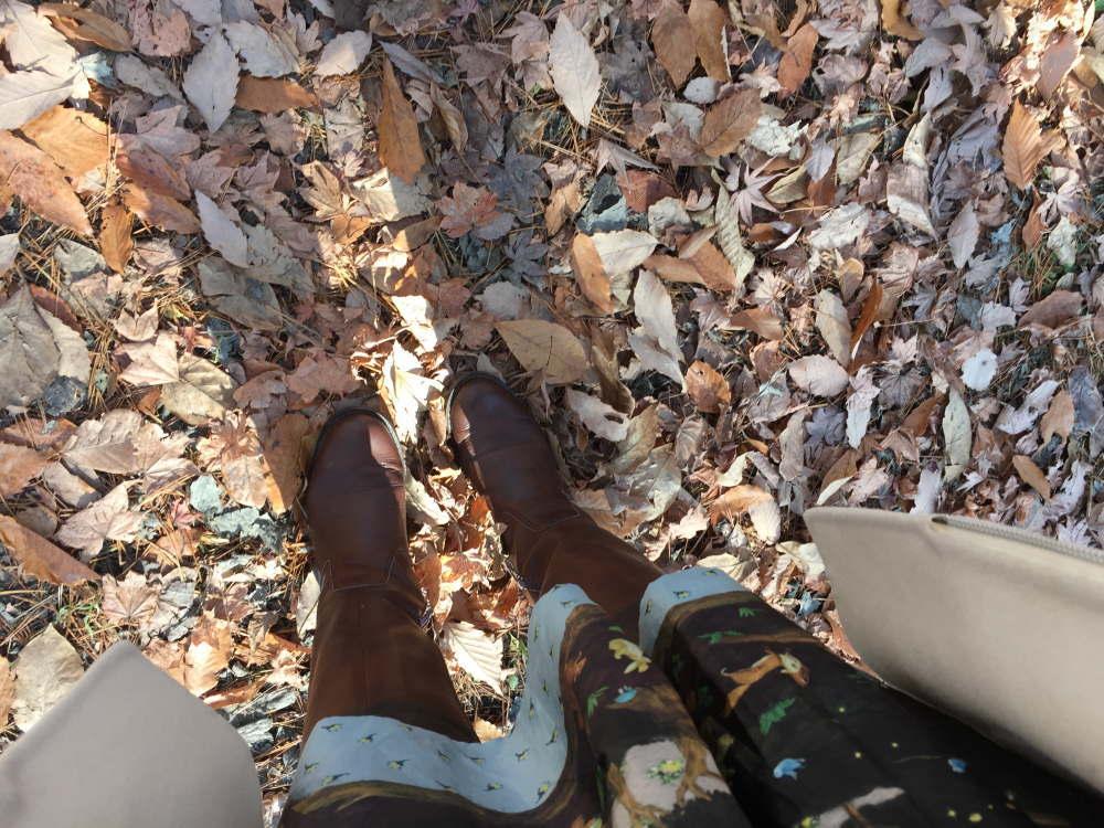軽井沢の冬 落ち葉