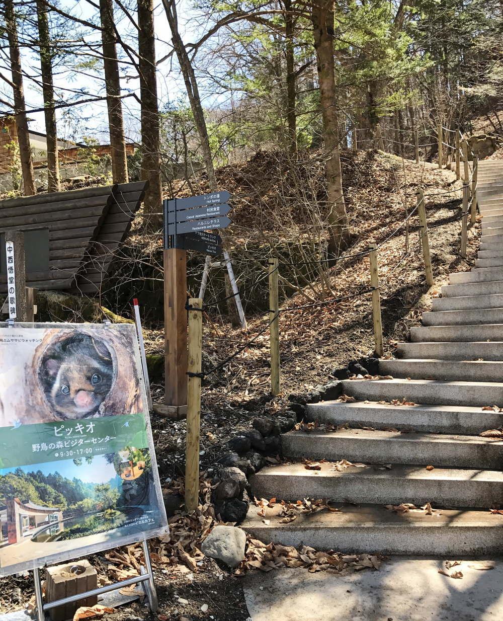 軽井沢 星野リゾート ピッキオへの階段
